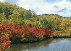 景观环境色彩分析